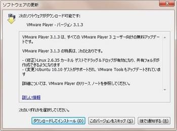 VMwarePlyer313.jpg